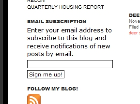 Email Subscribtion on DavidCRealEstate.com